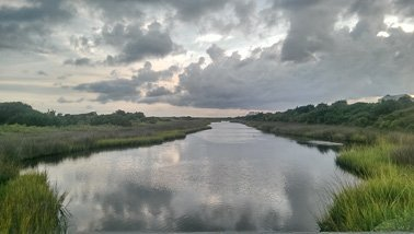Cherry Grove Salt Marsh Tour